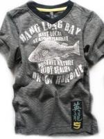 Chlapecké šedé triko s rybou značky TEIDEM